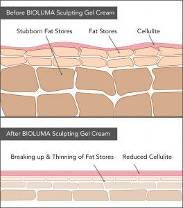 weight loss, fat burn, shred fat diagram